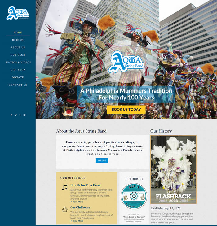 Aqua String Band Web Design Portfolio