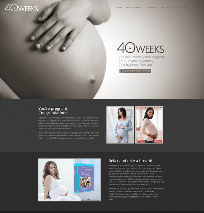 Philadelphia Web Design - 40 Weeks the Movie
