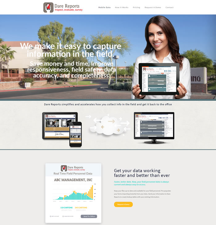 Dare Reports Web Design Portfolio