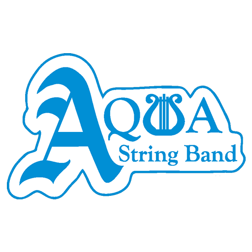 Philadelphia Web Design Portfolio - Aqua String Band